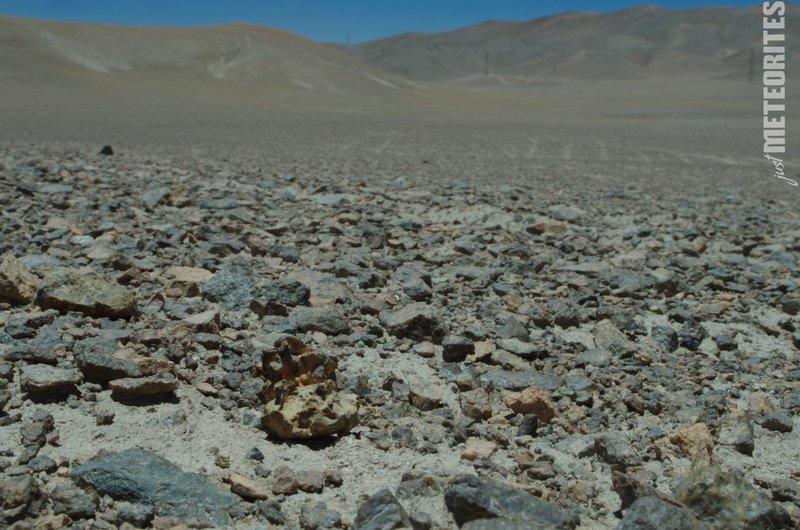Imilac meteorite in situ