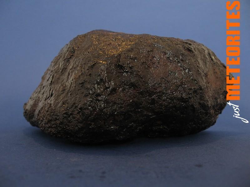Muonionalusta Meteorite etched endcut 1876g