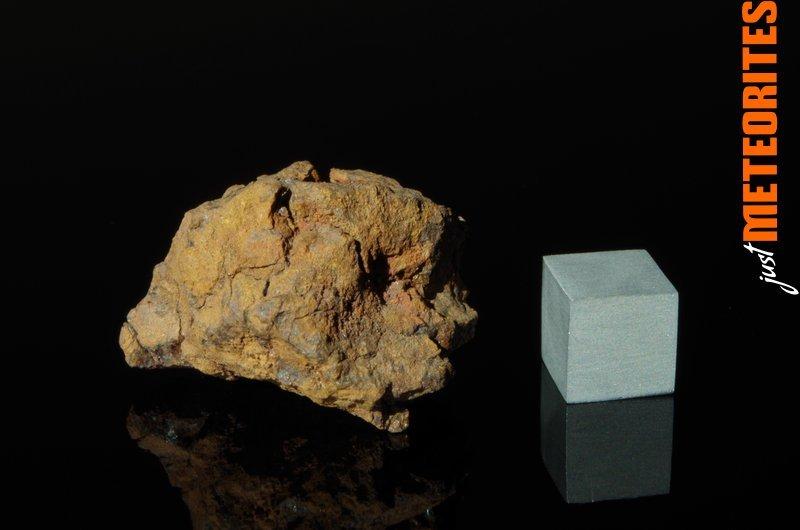 Vaca-Muerta-meteorite-IMGP6199