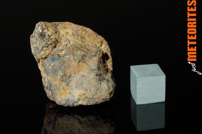 Vaca-Muerta-meteorite-IMGP6201