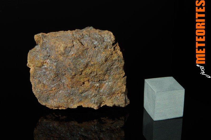 Vaca-Muerta-meteorite-IMGP6207