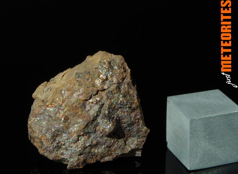 Vaca-Muerta-meteorite-IMGP6235