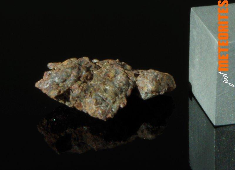 Vaca-Muerta-meteorite-IMGP6457