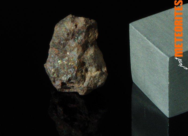 Vaca-Muerta-meteorite-IMGP6468