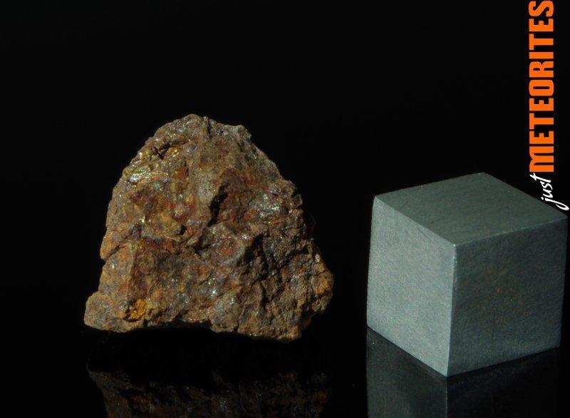 Vaca-Muerta-meteorite-IMGP6487