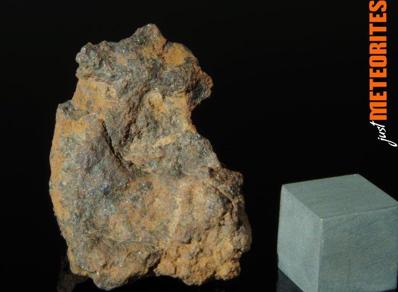 Vaca-Muerta-meteorite-IMGP6489