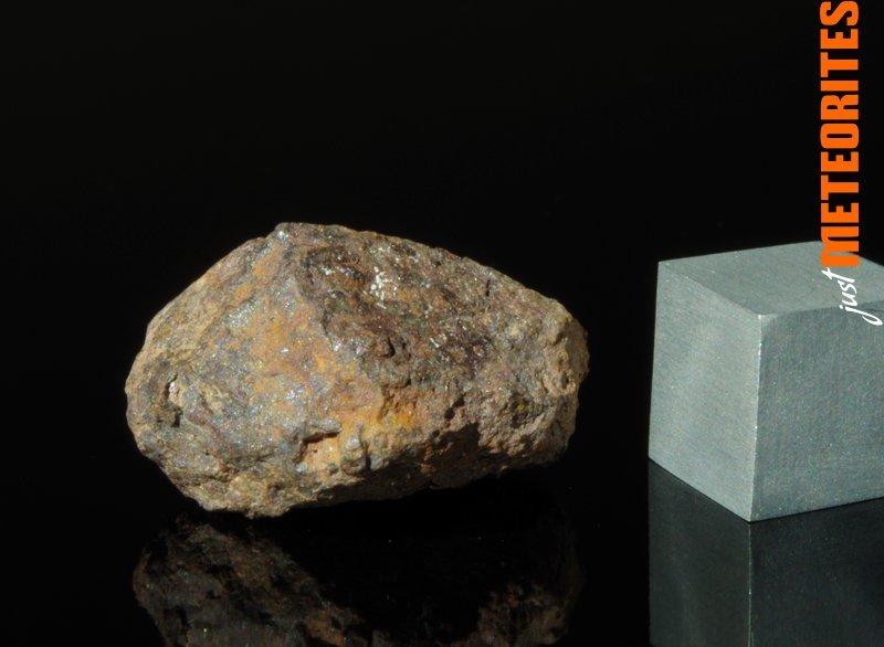 Vaca-Muerta-meteorite-IMGP6510