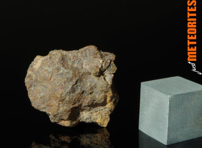 Vaca-Muerta-meteorite-IMGP6511